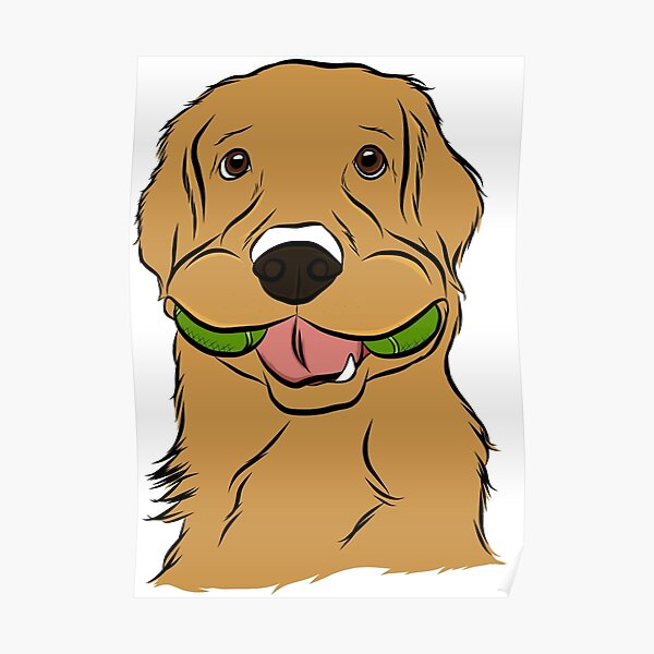 Playful Golden Retriever Poster