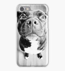 Staffy! iPhone Case/Skin