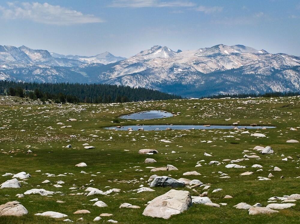 Gaylor Lakes- Yosemite by David Chesluk