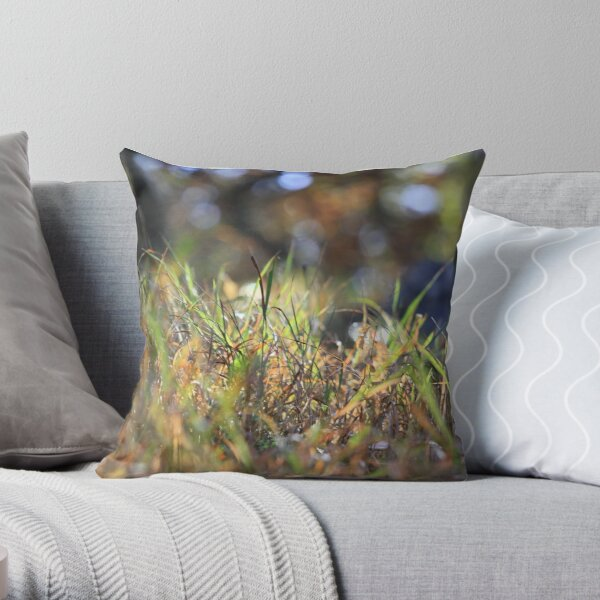 Grass touched by sunlight Throw Pillow