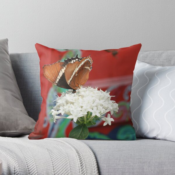 Butterfly on white flower Throw Pillow