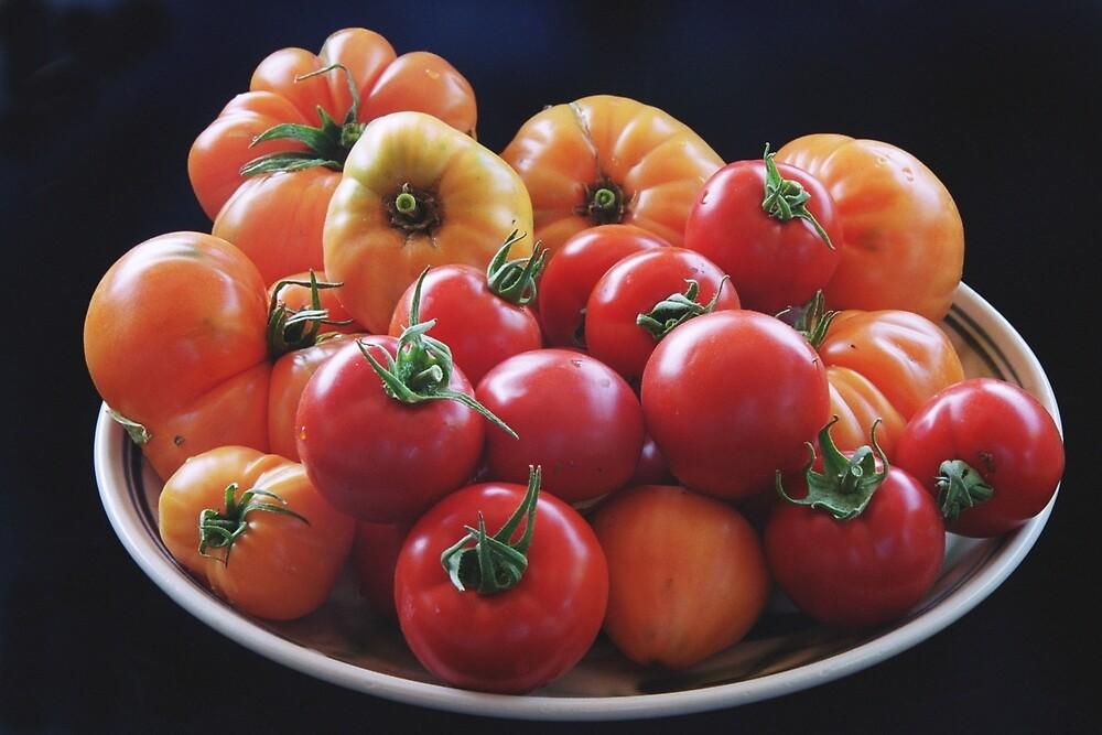 tomatos by David Chesluk