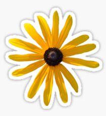 Summer Flower Sticker