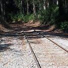 Snata Cruz railroad tracks by geot