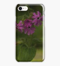 Pink Campion in Prehen Woods, Derry iPhone Case/Skin