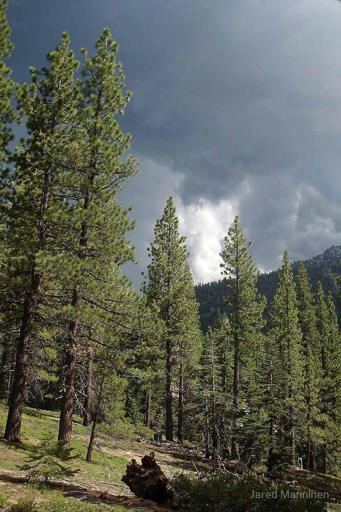Storm Clouds Over the Sierra Nevada Mountains by Jared Manninen