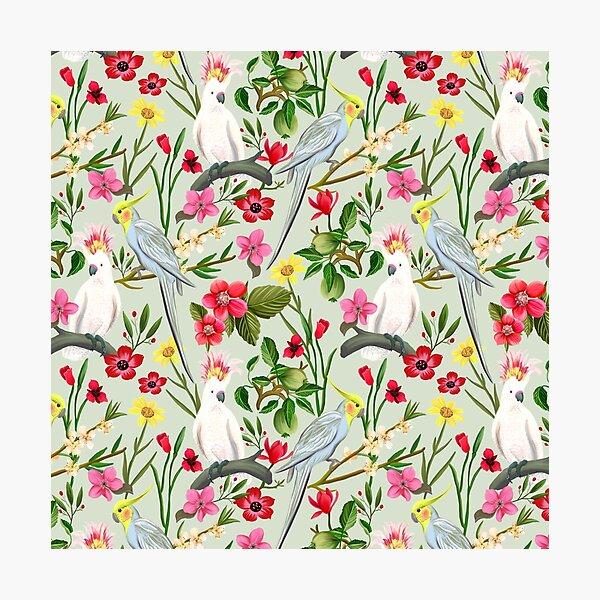Parakeet & Cockatoo Garden Pattern Photographic Print