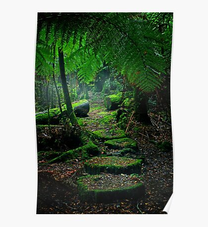 Mother Earth - Tarkine Rainforest Poster