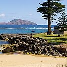 Norfolk Island, Australia. by johnrf