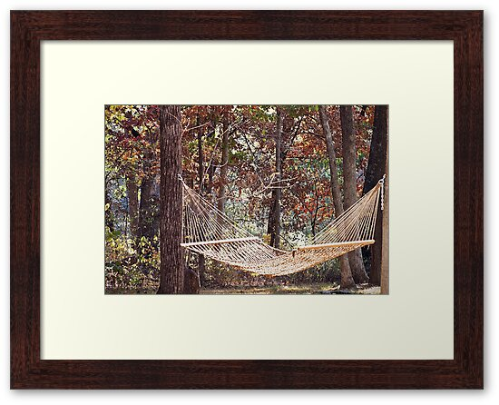 Relaxing in a Hammock during the change of seasons by Sherry Hallemeier