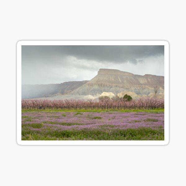 Mt. Garfield in Bloom Sticker