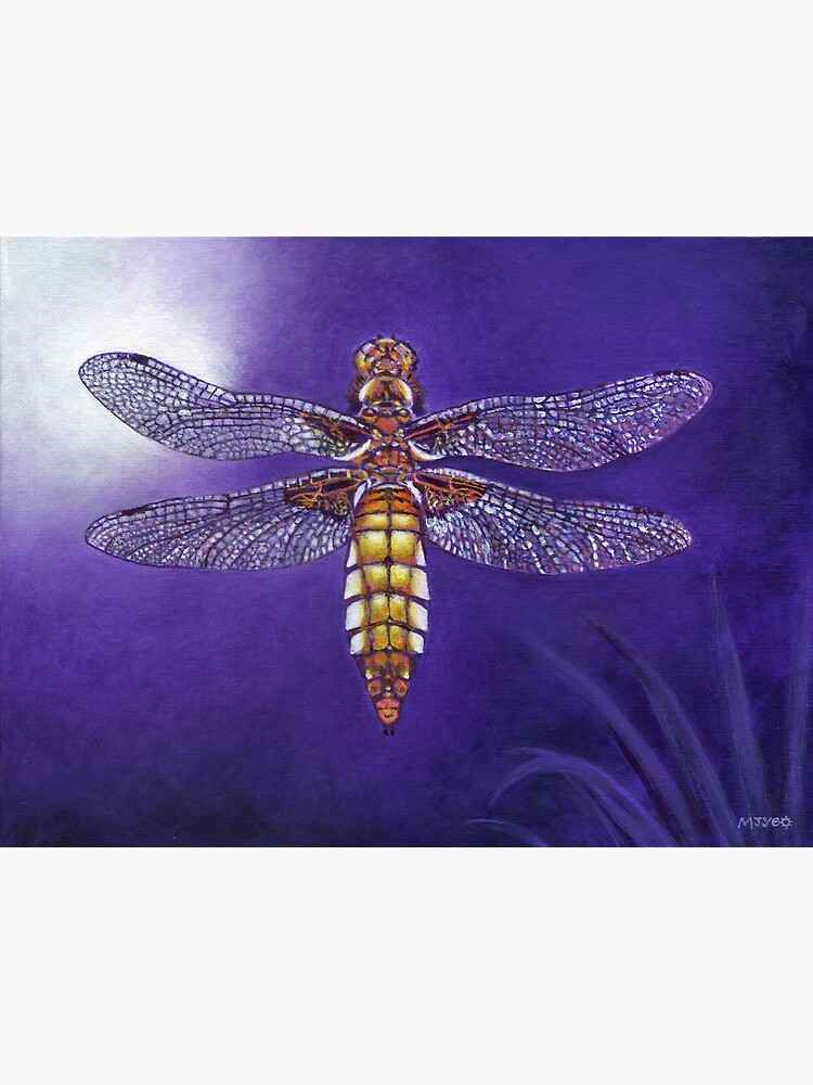 dragonfly broad bodied chaser painting by nature2canvas