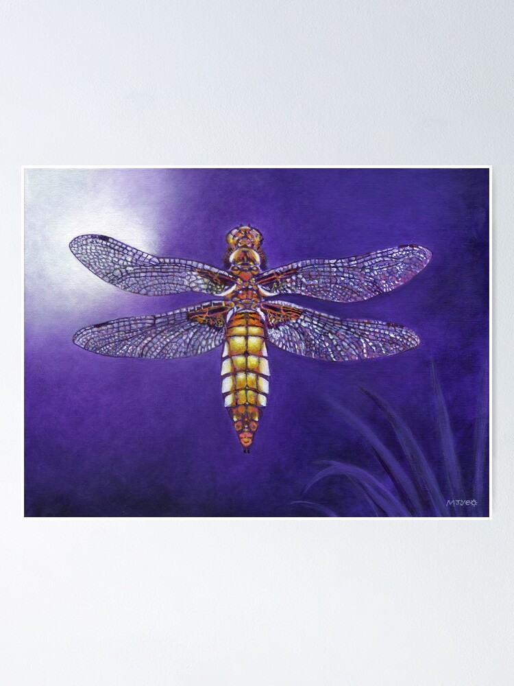 Alternate view of dragonfly broad bodied chaser painting Poster