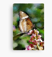 Clipper Butterfly - watercolour Canvas Print
