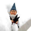 Snowbound Todd by thedustyphoenix