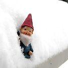 Snowbound Hector by thedustyphoenix