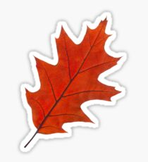Red autumn leaf Sticker