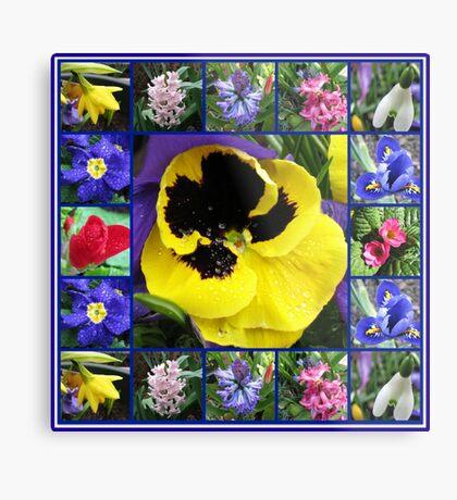 Riot of Colour Spring Flowers Collage Metallbild