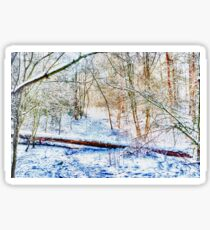 Forest in the Snow HDR Sticker