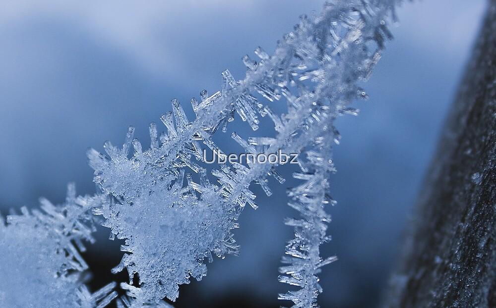 Ice Crystals on Web by Ubernoobz