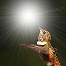 LIGHT.....MAGIC.... by RoseMarie747