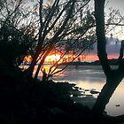 Pottsville Creek by donnalee6369
