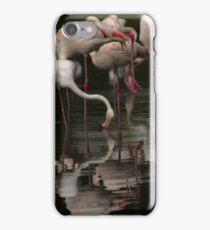 More Flamingos iPhone Case/Skin