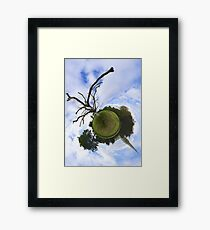 Dead Elm Tree in Brooke Park, Derry Framed Print