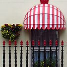Window Box And Railings by wiggyofipswich