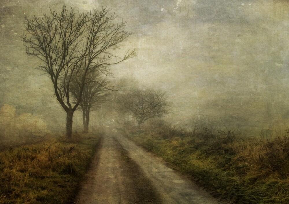 Into the Fog by Sarah Jarrett
