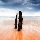 Totems - Sandsend groynes by PaulBradley