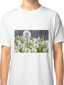 Dandelions Classic T-Shirt