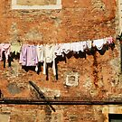 Hanging out to dry by Christine  Wilson