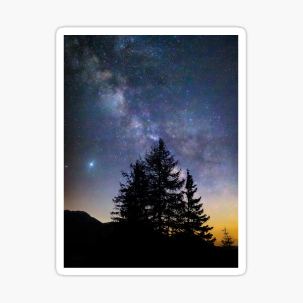 Trees under the stars Sticker