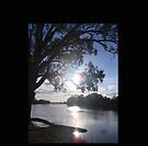 Sunset on the Murray (in Australia) by KazM