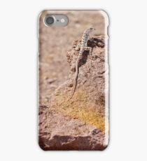 Long-Nosed Leopard Lizard iPhone Case/Skin