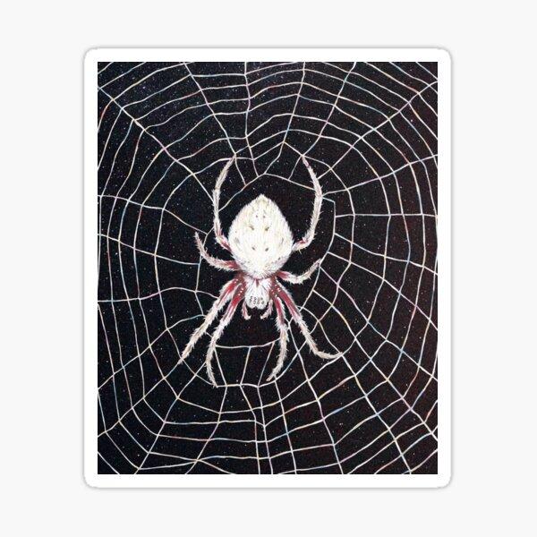 Wheel-weaving Garden spider Sticker