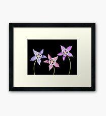 Aquilegia Flower Framed Print