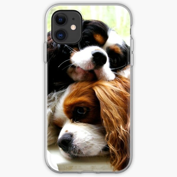 Brothers Cavaliers iPhone Soft Case