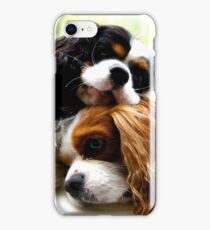 Brothers Cavaliers iPhone Case/Skin