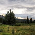Rockies at Dusk by Tracy Friesen
