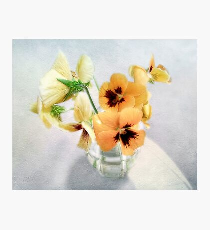 Golden Pansies Still Life Photographic Print