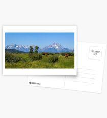 3244 Postcards
