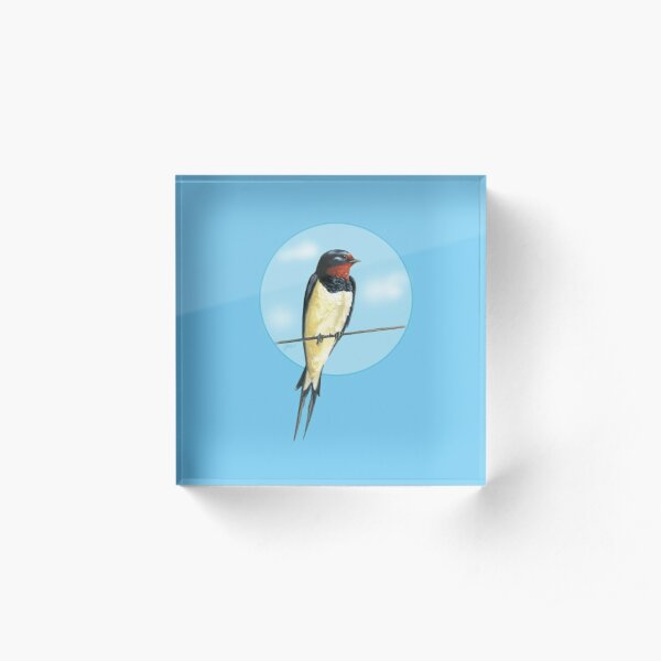 Swallow on a wire Acrylic Block