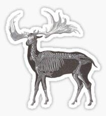 Megaloceros - Giant Prehistoric Elk Sticker