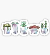 Pflanzenwelt Sticker