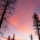 Sunrise Over the Angora Burn Area by Jared Manninen