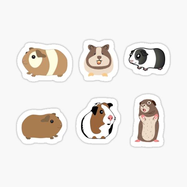 Guinea Pig Sticker Pack Sticker