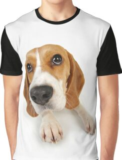 Beagle dog lying down Graphic T-Shirt