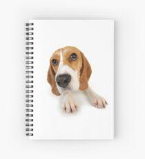 Beagle dog lying down Spiral Notebook